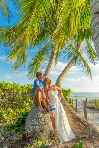 wedding couple rest on palm tree after beach ceremony