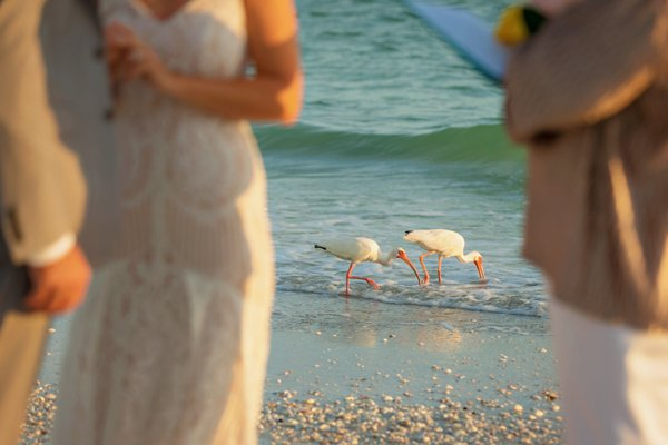 wedding ceremony on Sanibel Island